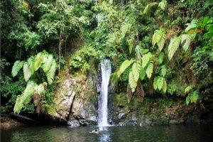 air terjun batu dinding, panorama alam yang menakjubkan