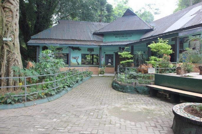 Museum Zoologi Pematang Siantar
