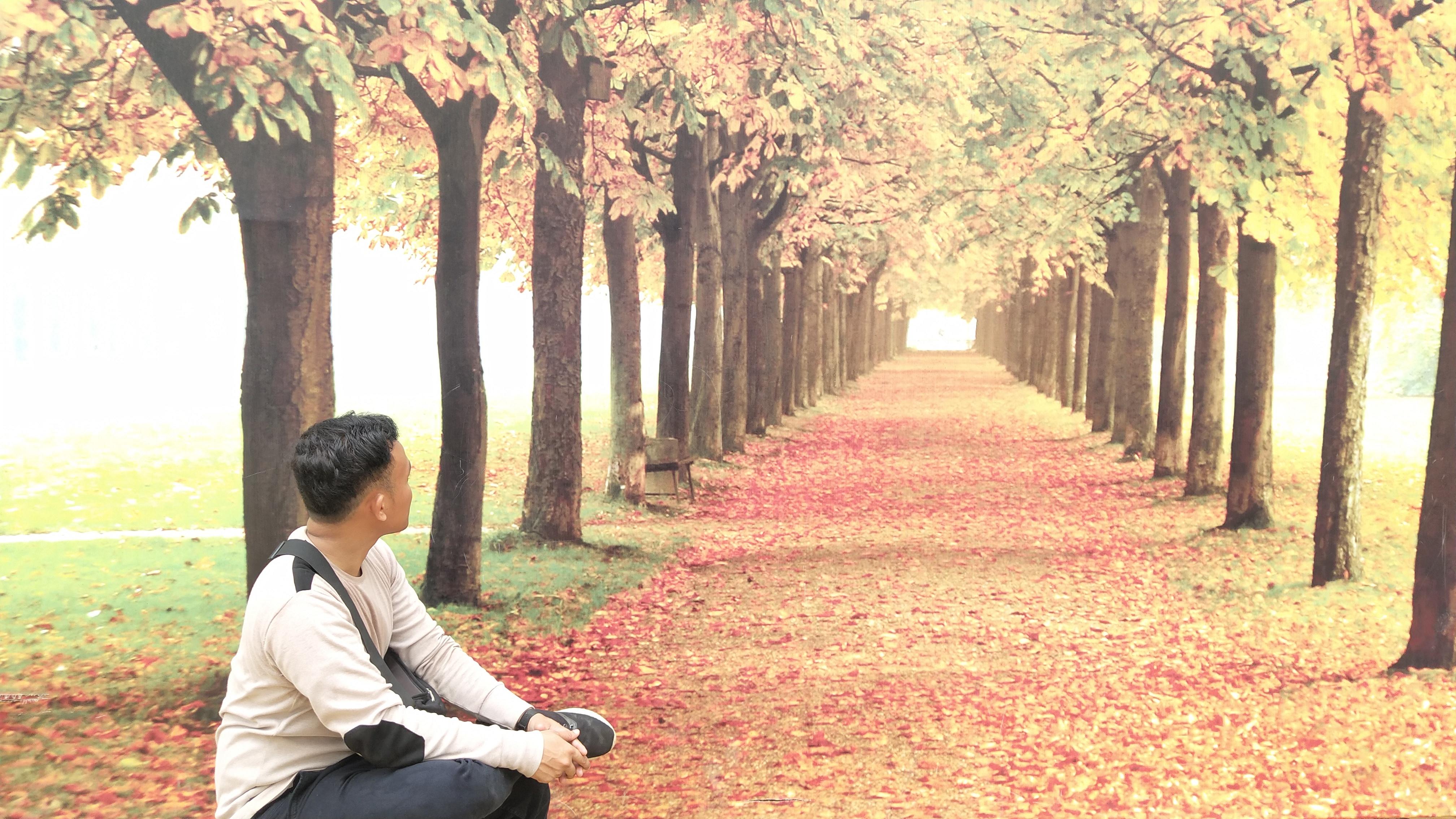 Rumah Pohon Bagan Batu, Wisata Rokan Hilir Terbaru 9