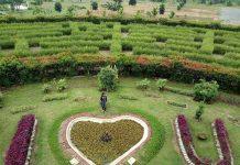 kebun raya banua